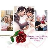 Recensione Gomyhom Rosa 24K Regali per Lei Fiore Rose Stabilizzata Idee Regalo per San Valentino, Anniversario, Festa della Donna, Festa della Mamma, Compleanno, Natale, Matrimonio