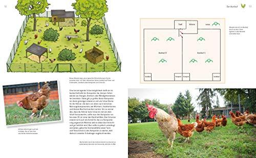Das große Buch der Hühnerhaltung im eigenen Garten: Pflege, Haltung, Rassen - 5