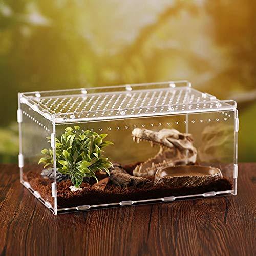 Wintesty Acryl-Reptilienzuchtbox Box für Amphibien Insekten Reptilien Zuchtbox Transportboxen excellently