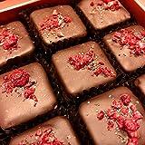 Eat to Fit - Cranberries & Coconuts zuckerfreie Schokoladen Fudges - Ohne Zucker - diabetiker Schokolade - Box...