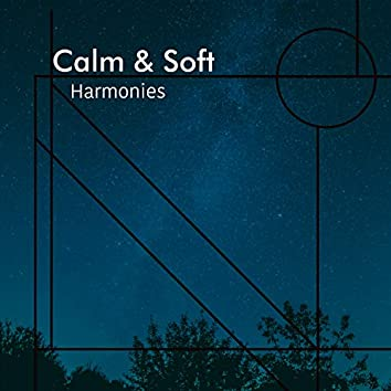 # 1 Album: Calm & Soft Harmonies