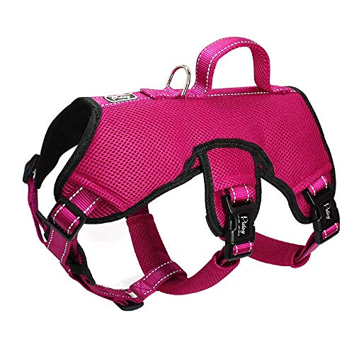 Secure Dog Harnesses