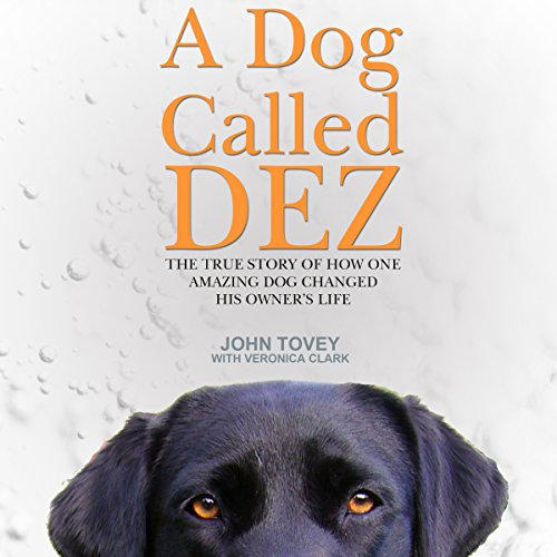 A Dog Called Dez audiobook cover art