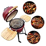 Aoxun 19' Kamado Grill, Roaster and Smoker. BBQ Grill,Multifunctional Ceramic Barbecue Grill, Egg Outdoor Kitchen Style