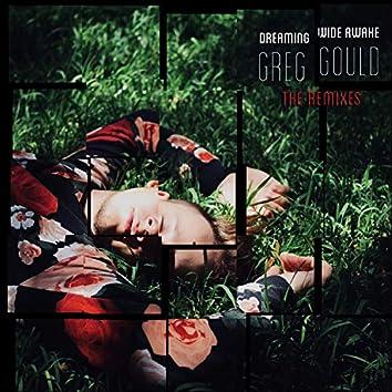 Dreaming Wide Awake (The Remixes)