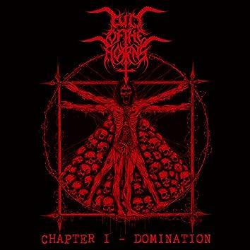 Chapter I. Domination