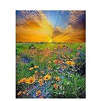 番号キットによるアクリル絵の具キャンバスの花のフレームの大人のための番号によるDIY風景油絵ユニークなG