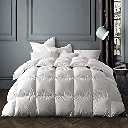 Globon Winter White Goose Down Comforter