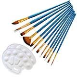 L&SH El Cepillo De Pintura Conjunto, 12 Blue Pearl Cepillos con 2 Gamas De Combinaciones, 14pcs DIY De Nylon Cepillo De Pelo, Adecuado para Niños Y Principiantes (14pcs)