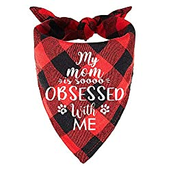 "Black and red plaid dog bandana with the saying ""My Mom is soooo Obsessed with me"" on the front."
