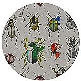 Alfombras de sala de estar Varios de alfombras de escarabajo pequeños Dormitorios 2 pies Redondo antideslizante Microfibra Alfombra de área pequeña lavable a máquina para cocina Comedor Sala de estar