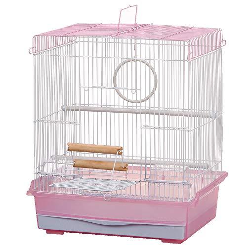 マルカン バードパレスパーム ピンク (幅40×奥行き30×高さ46cm)