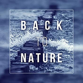 Back to Nature - Endless Ocean, Spirit of Rain, Crystal Water, Wilderness Tranquility