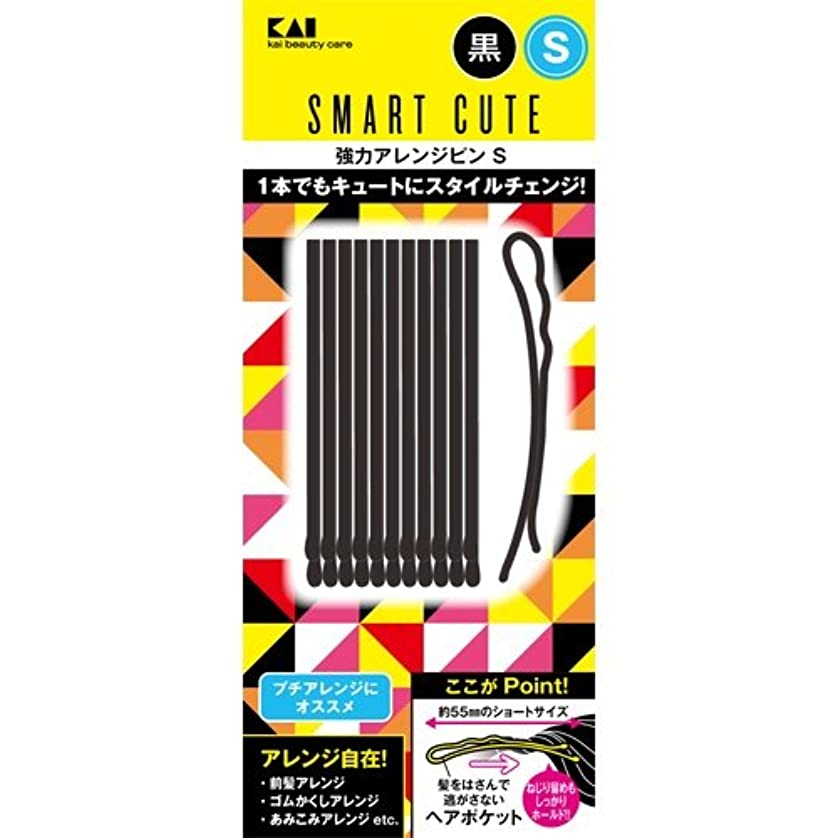 吐く先綺麗なスマートキュート(SmartCute) 強力アレンジピンS (黒 ) HC3318