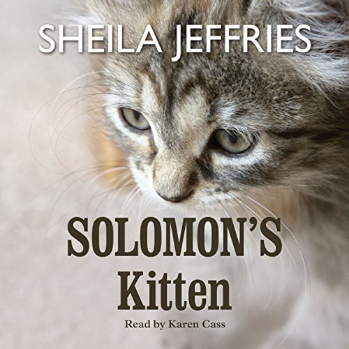 Solomon's Kitten cover art