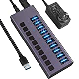 USB 3.0 Hub-10 Ports Powered USB Hub 60W USB Charging Hub with Individual On/Off Switches and 12V/4A...