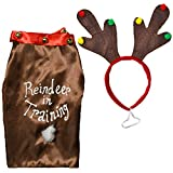 'Reindeer in Training' Dog Novelty Christmas Costume - Coat & Headband - Medium