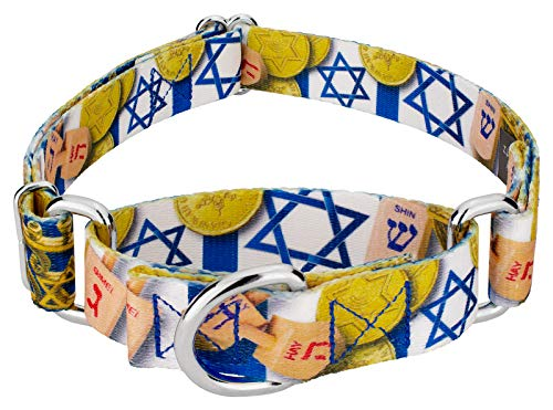 Country Brook Petz - Happy Hanukkah Martingale Dog Collar - Christmas Collection with 15 Festive Designs (1 Inch, Medium)