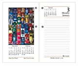 AT-A-GLANCE Recycled Daily Photographic Desk Calendar Refil, 3-1/2 x 6 Inches, White and Cream, 2011 (E417-50)