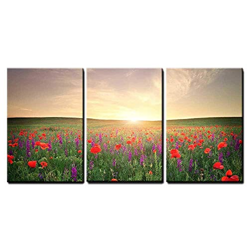 wall26 - 3 Piece Canvas Wall Art - Field with Grass, Violet Flowers and Red Poppies Against The Sunset Sky - Modern Home Art Stretched and Framed Ready to Hang - 24'x36'x3 Panels