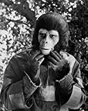 Roddy McDowall in Planet of The Apes in Scene from 1974 TV Series as Galen 16x20 Canvas