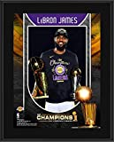LeBron James Los Angeles Lakers 10.5' x 13' 2020 NBA Finals Champion Sublimated Player Plaque - NBA Team Plaques and Collages