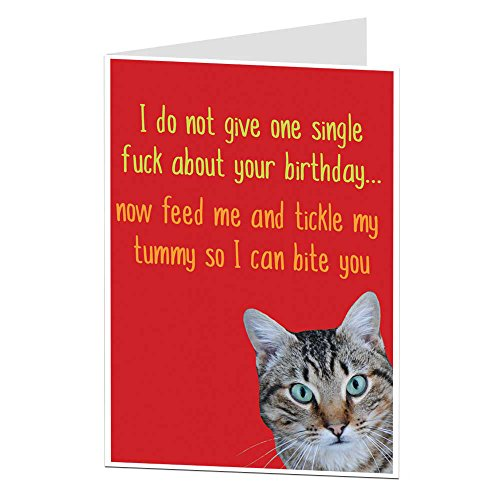 Funny Birthday Card Cat Pet Theme Rude Offensive Perfect For Owner Lover Men & Women