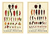 The Great Chile Poster Fresh and Dried Mark Miller Pepper