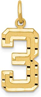 14k Gold Diamond-Cut Number Charm Pendant with Satin Finish - # 0 to 99 Available