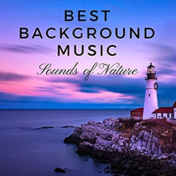 Best Background Music: Sounds of Nature, Sounds of Earth, Mindfulness Meditation, Relaxing Zen Music Garden Tracks