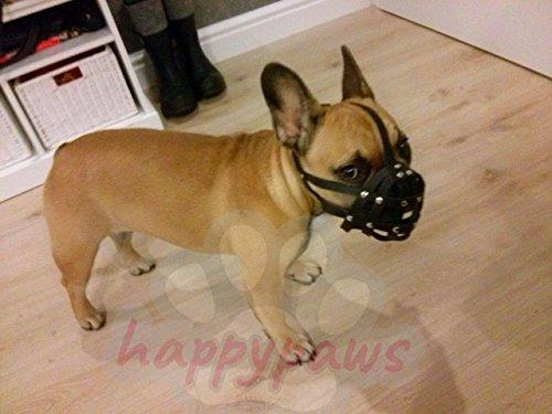 Light Leather Dog Muzzle for French Bulldog - Frenchies (Fb0, Black)