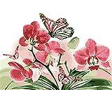 Lcgbw Pintar por Numeros Mariposa Pintar por Números para Niños Adultos Kit De Pintura Al Óleo DIY Principiante-40X50Cm(Sin Marco)