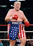 Poster Kopoo Donald Trump Rocky Balboa, 30,5 x 45,7 cm