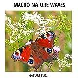 Macro Nature Waves - Nature Fun