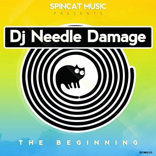 DJ Needle Damage