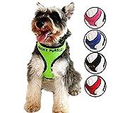 Oncpcare - Arnés para Perro con Nombre y número de teléfono Bordado, Collar de identificación Personalizado, Chaleco Acolchado de Malla Suave para Perros