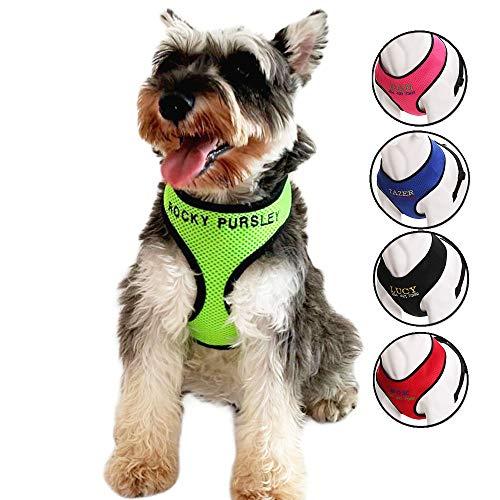 Oncpcare Hundegeschirr mit Namen, bestickt, Name, Telefonnummer, Haustiergeschirr, personalisierbar, ID-Halsband, weiches Netzgewebe, gepolsterte Halsband, Weste für Hunde