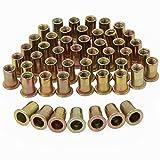 HSeaMall - Juego de 50 tuercas de remache M6 de acero al carbono chapado, con interior roscado.