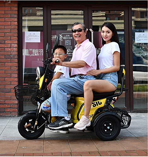 Xiaokang Práctico Triciclo eléctrico Adulto Hogar Batería Coche Pequeño Scooter eléctrico para...