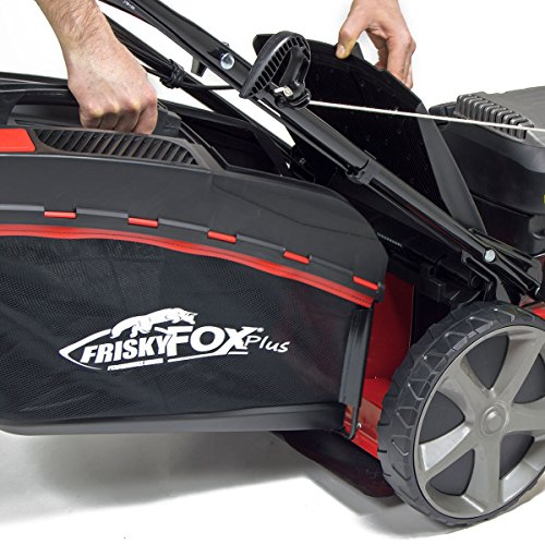 Frisky Fox Plus 20inch Review