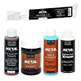 Modern Masters Metal Effects Iron Paint & Rust Activator Kit (4-Ounce)