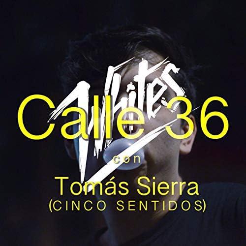 The Whites feat. Tomás Sierra & Cinco Sentidos