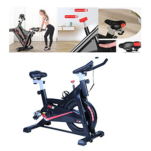 QWET Indoor Cycling Bike mit Schwungrad/No Ipad Holder, Heimtrainer, verstellbares Fitnessbike für das Cardio-Heimtraining