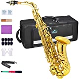 EASTROCK Alto Saxophone Gold E Flat Sax Full Kit for Students Beginner with Carrying Case,Mouthpiece,Mouthpiece Cushion Pads,Cleaning Cloth&Cleaning Rod,White Gloves,Neck Strap