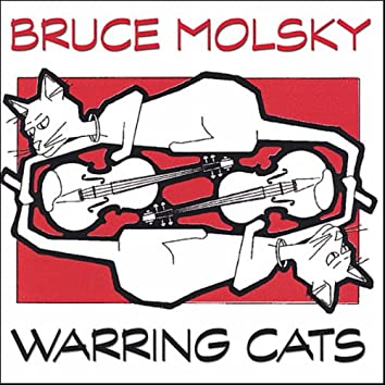Warring Cats