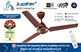 Jupiter Tricopter 5 Star Energy Saver Ceiling Fan with Remote Controlled - Matt Brown 3 Blades BLDC Motor 1200 mm