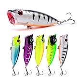 Best Lures For Smallmouth Bass - ZWMING Topwater Fishing Lure,Bass Lures Popper Fishing Baits,3D Review
