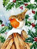 5D DIY diamante pintura pájaro Kit de punto de cruz bordado de diamantes Navidad Animal pared arte diamante pintura A7 45x60cm