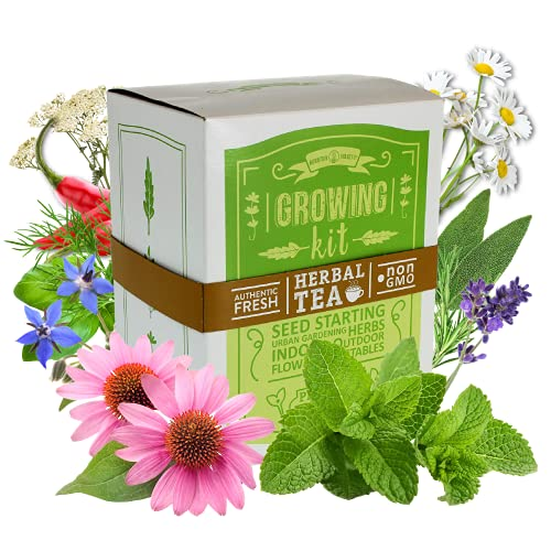 Medicinal & Herbal Tea Indoor Herb Garden Starter Kit - Deluxe Herb Seeds - 12 Varieties: Chamomile, Hot Pepper, Basil, Sage, Rosemary, Thyme, Lavender, Echinacea, Borage, Peppermint, & Yarrow