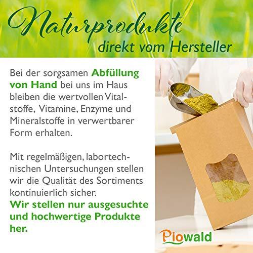 BIO Hanfprotein – 1 kg Vorratspack - 4